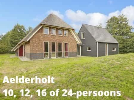 Landal Aelderholt, grote accommodaties voor 10, 12, 16 of 24 personen