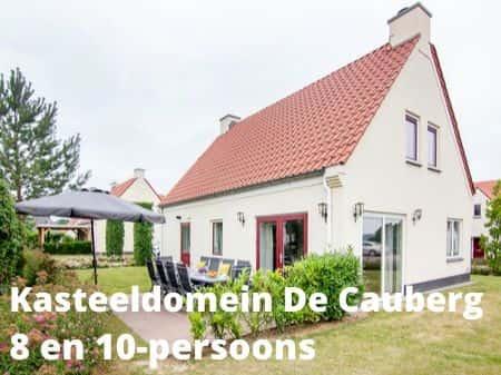Landal Kasteeldomein de Cauberg, grote accommodaties voor 8 of 10 personen
