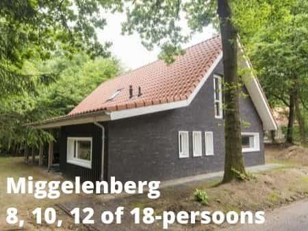 Landal Miggelenberg, grote accommodaties voor 8, 10, 12 of 18 personen
