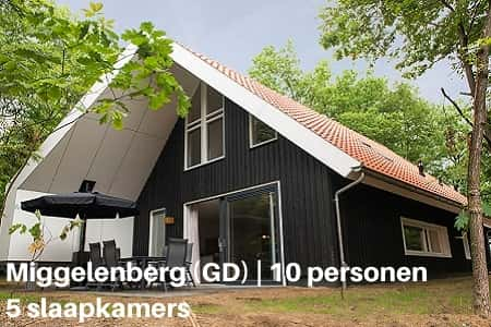 Landal 10 persoons huisje, Vakantiepark Miggelenberg, Gelderland Veluwe